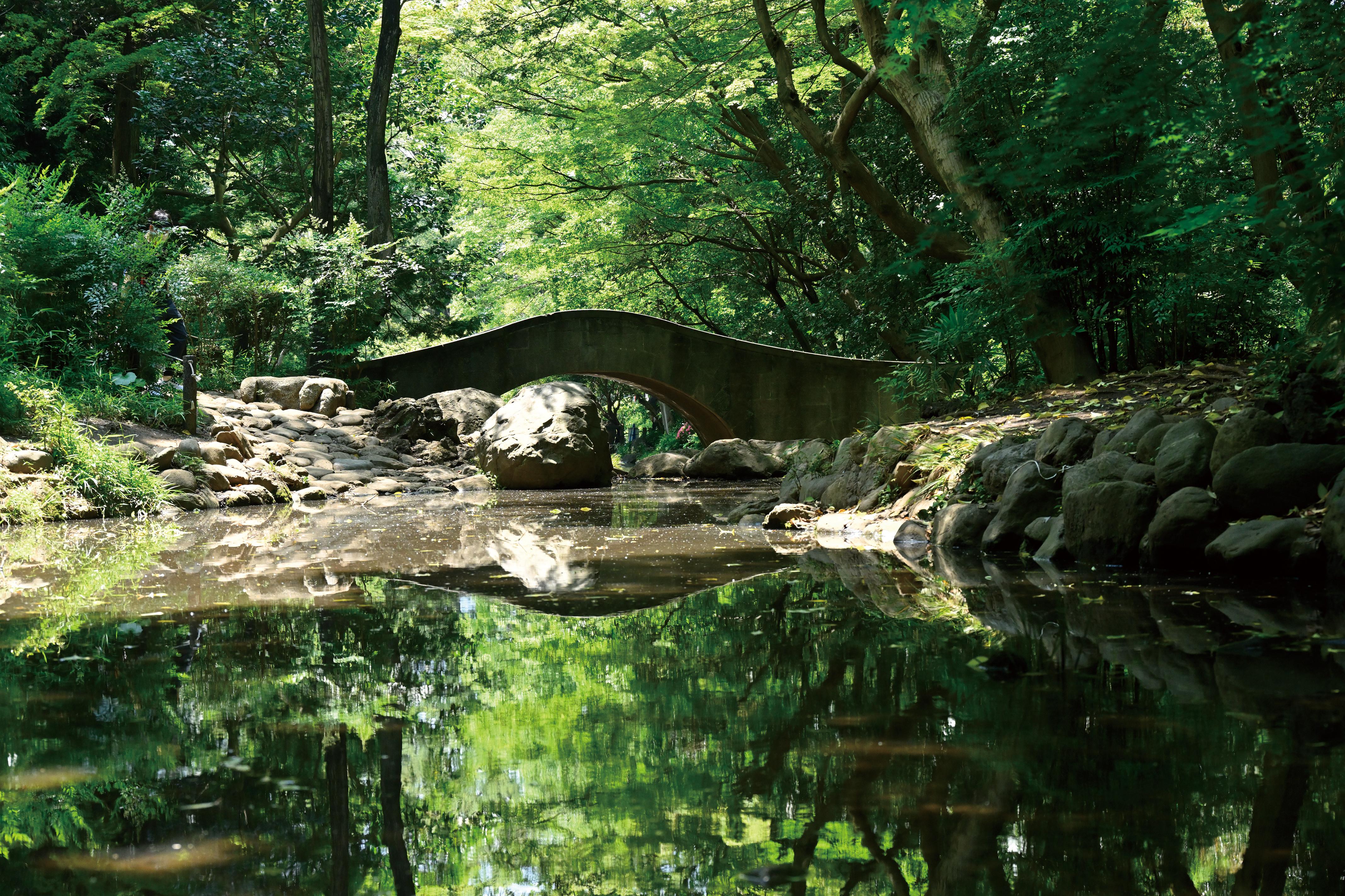 2021年7月号「有栖川宮(ありすがわのみや)記念公園」